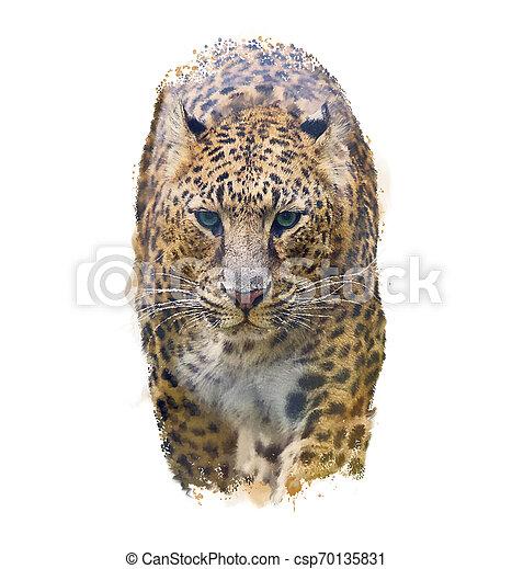 Portrait of Leopard .Watercolor illustration - csp70135831