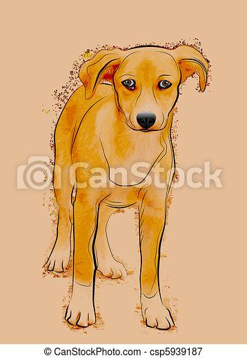 portrait, sdf, chien, errant - csp5939187