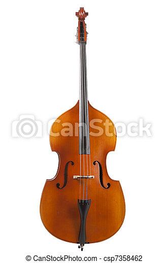 Bass en un fondo blanco, de pie - csp7358462