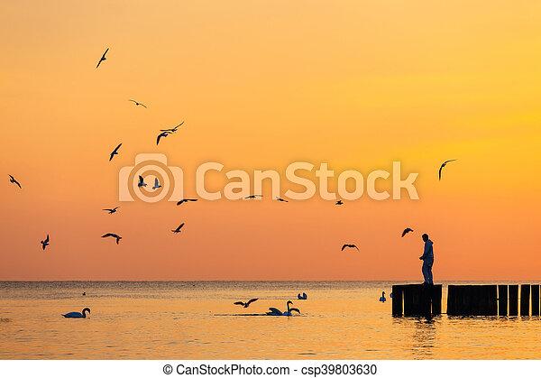 La silueta de un hombre de pie en un rompeolas contra el cielo al amanecer - csp39803630