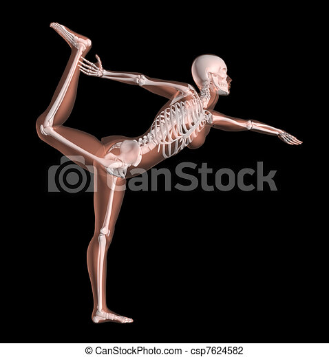 position, yoga, squelette, femme - csp7624582