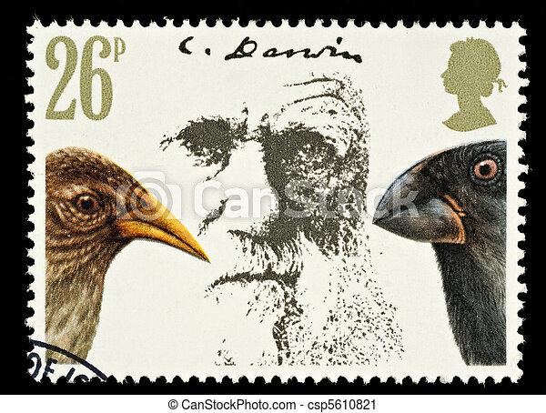 Postage Stamp - csp5610821