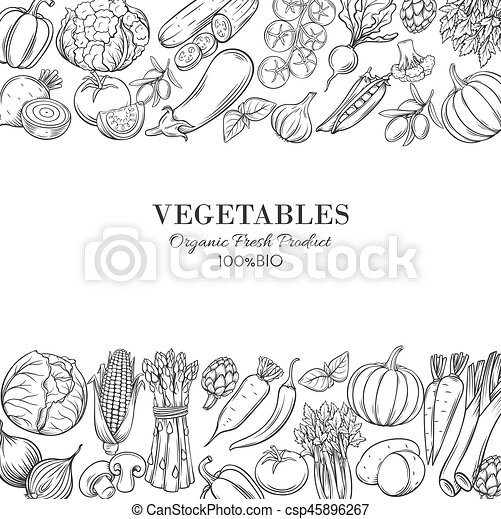 Poster template borders with hand drawn vegetables - csp45896267