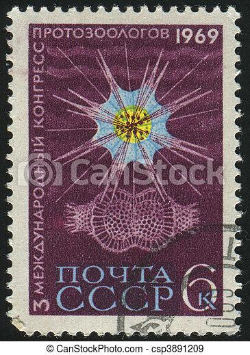 postmark - csp3891209