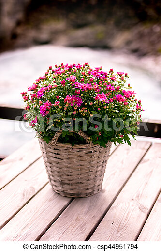 Bloemen In Pot.Pot Bloemen
