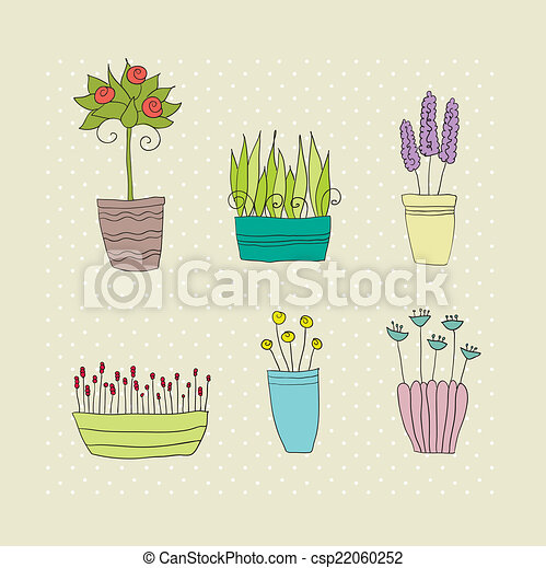 pot plants with flowers and leaves - csp22060252