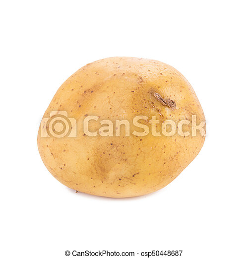 Potato isolated on white background. - csp50448687