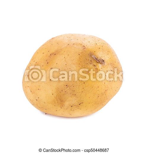 Potato isolated on white background. - csp50448687
