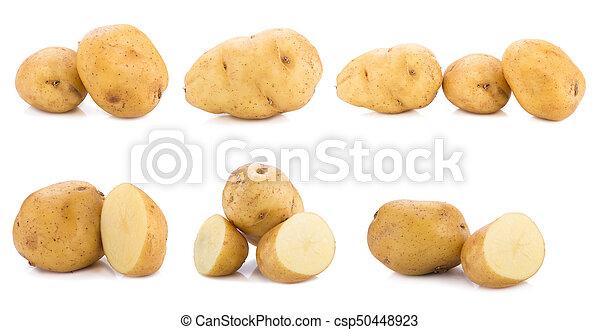 Potato isolated on white background. - csp50448923