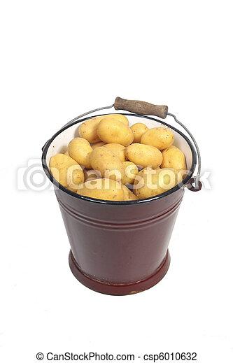 Potatoes in a bucket - csp6010632