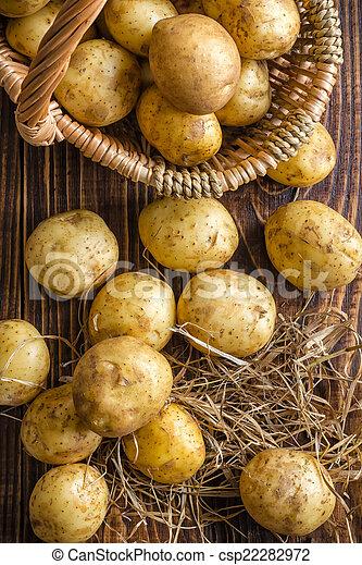 Potatoes - csp22282972