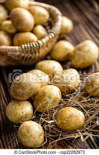 Potatoes - csp22282973