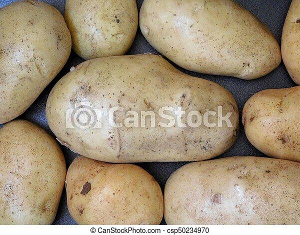 potatoes - csp50234970