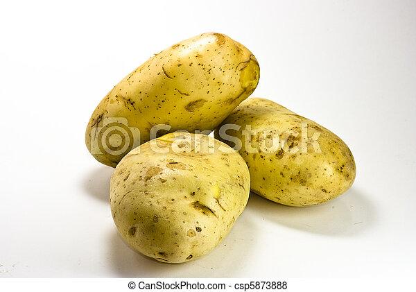 Potatoes - csp5873888