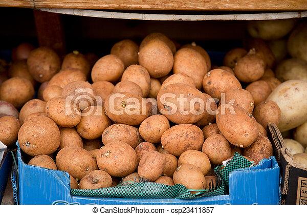 potatoes. - csp23411857