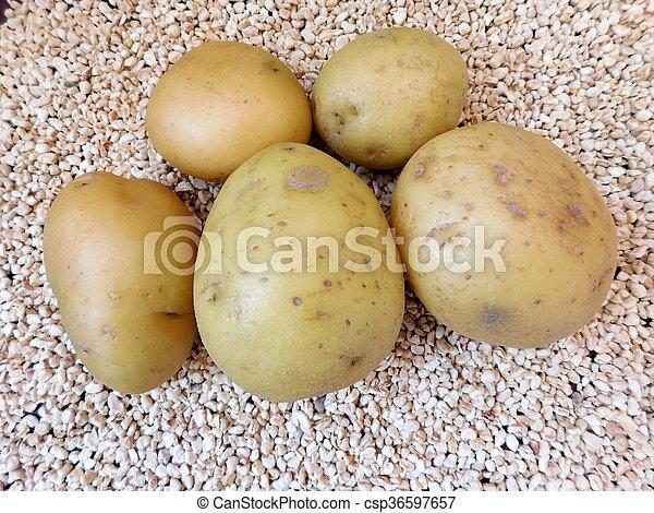 potatoes - csp36597657