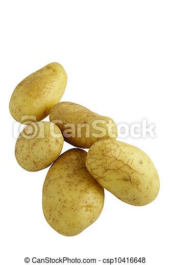 Potatoes - csp10416648