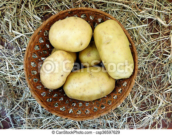 potatoes - csp36597629