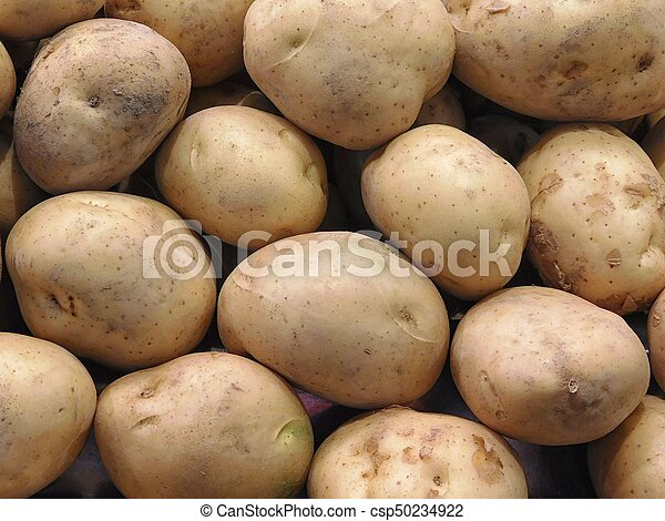 potatoes - csp50234922