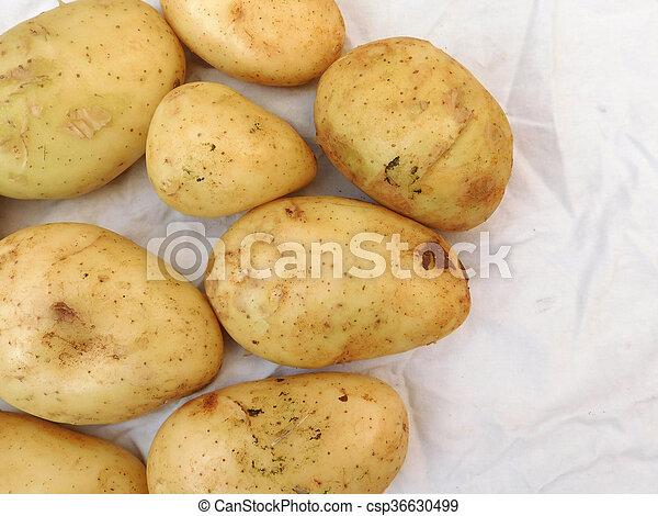 potatoes - csp36630499