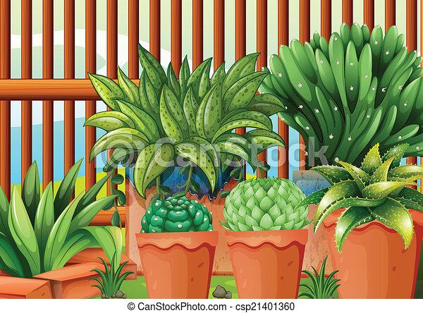 Pots with plants - csp21401360
