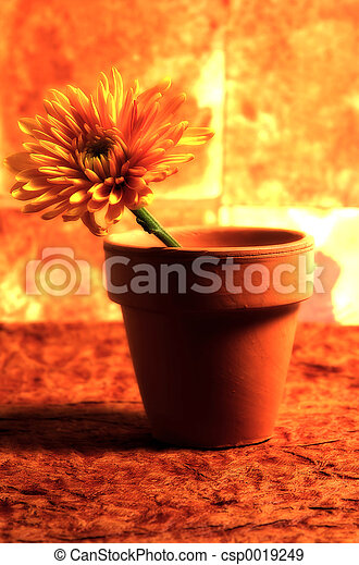Potted Flower 1 - csp0019249