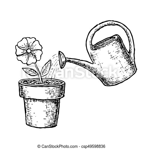 Potted Flower And Watering Can Gardening And Farming Sketch