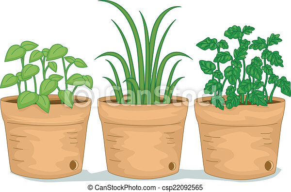 illustration featuring potted herbs rh canstockphoto ca Herb Illustrations herbs clipart free