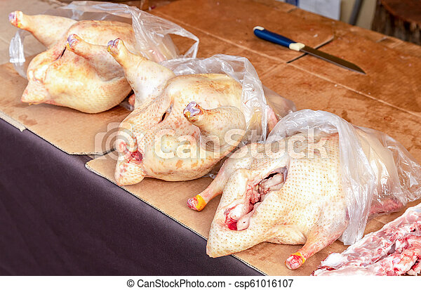 Poultry meat ready for sale at the farmers market - csp61016107