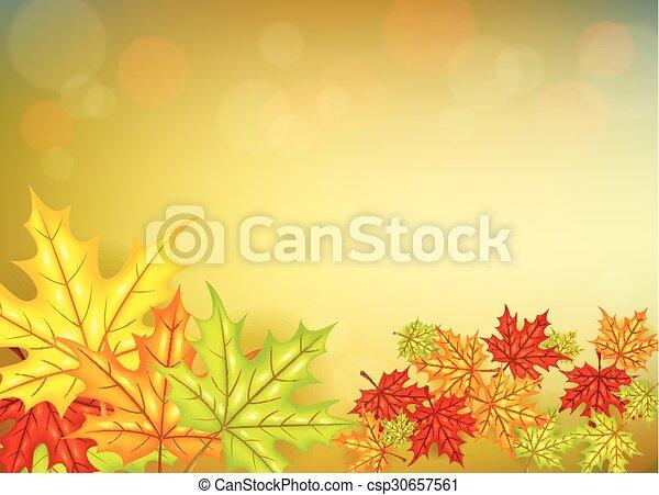 pousse feuilles, fond, automne - csp30657561