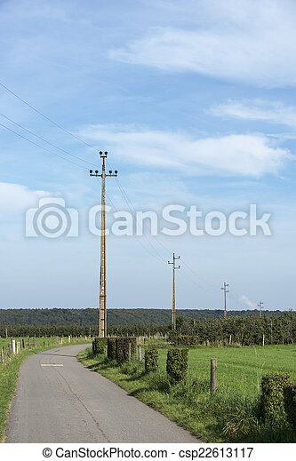 power lines in nature - csp22613117