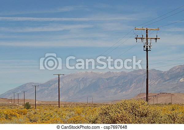 Power poles in the blooming desert - csp7697648