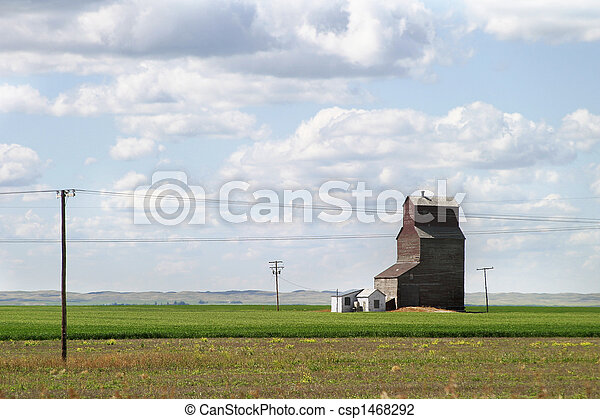 prärie, landschaftsbild - csp1468292
