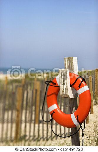 préservateur vie, plage. - csp1491728