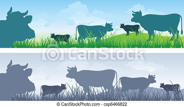 Vaca sobre pradera - csp6466822