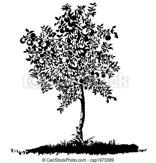 prado, árvore, silueta, maçã, jovem - csp1973389