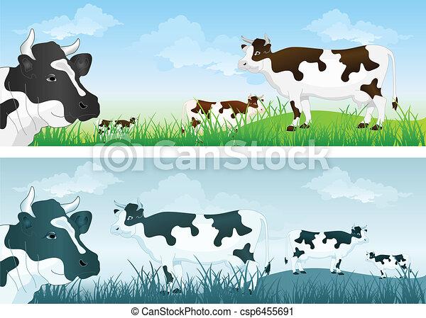 prado, vaca - csp6455691