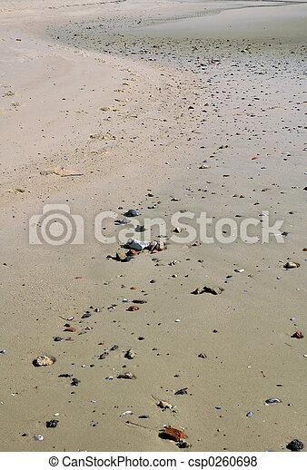 praia, longo - csp0260698