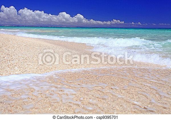 praia, paisagem, deslumbrante - csp9395701