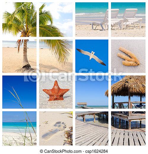 praia, tropicais, colagem - csp1624284