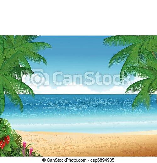 praia tropical - csp6894905