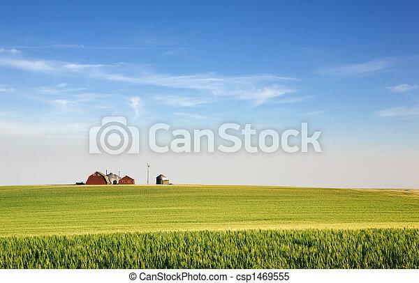 prairie, cultures - csp1469555