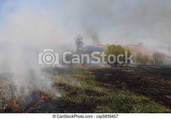 Prairie Fire - csp5839457