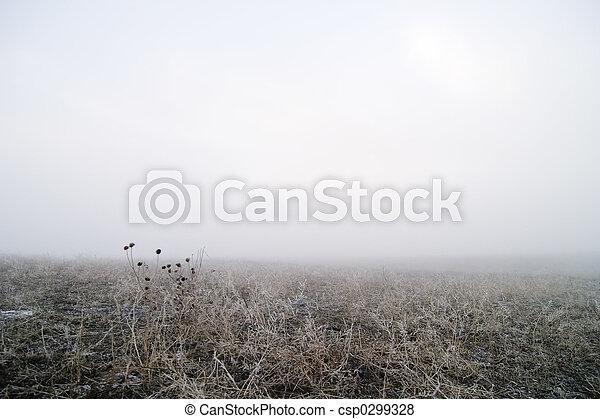 Prairie Fog - csp0299328