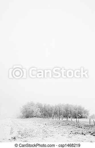 Prairie Fog - csp1468219