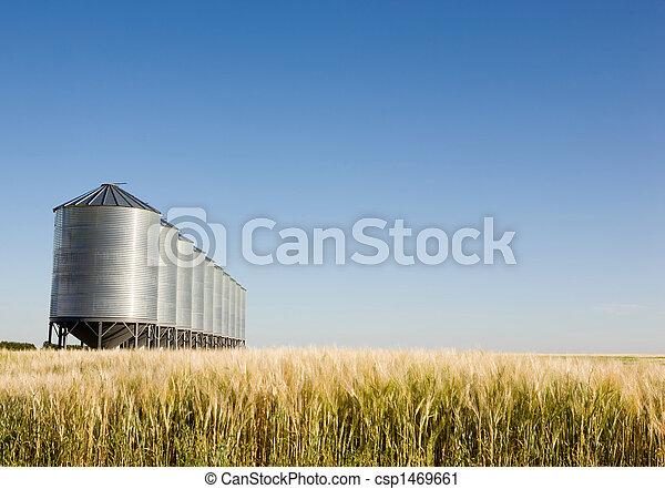 Prairie Harvest - csp1469661
