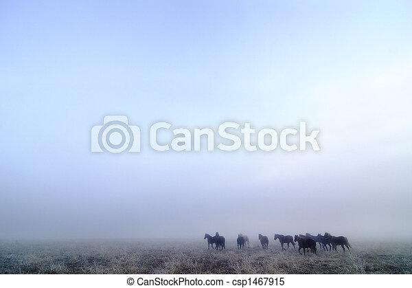 Prairie Horses - csp1467915