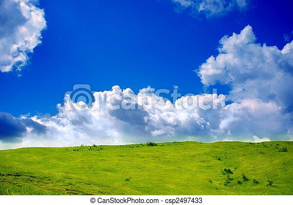 prairie, nuages, vert - csp2497433
