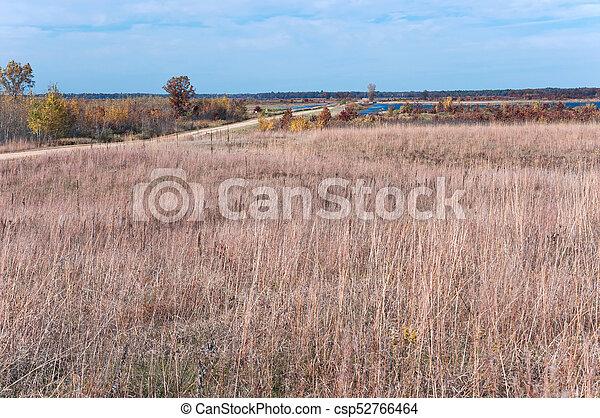 Prairie Road at Necedah Refuge - csp52766464