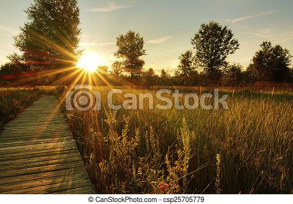 Prairie Sunset - csp25705779